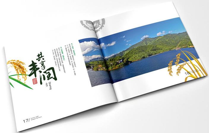 画册设计公司印刷的设计中有哪些样式